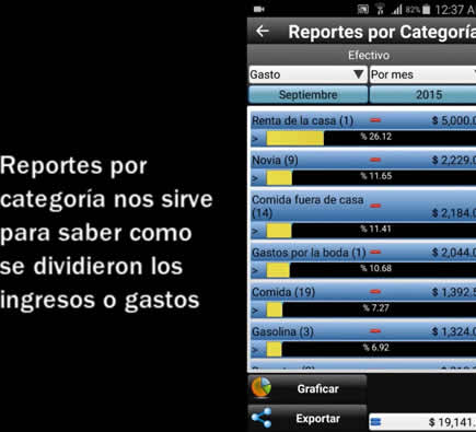 Reports by category